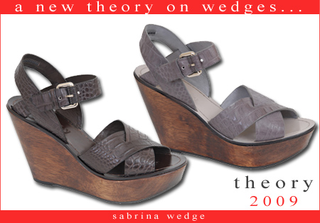 sp09-theorywedges